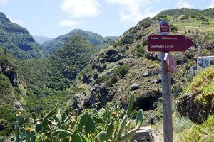 La Palma Noorden wandelen