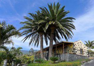 vakantiehuizen la palma oceaanzicht